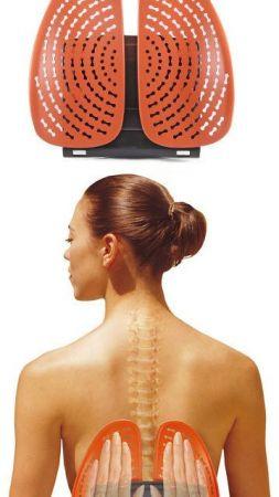 Анатомична Облегалка MAXIMA Anatomical Backrest 503107 310610 изображение 3